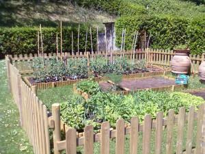 cultivarea legumelor pe spaţii mici