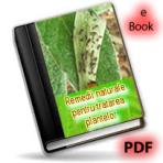 Tratamente si remedii naturiste pentru plante